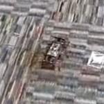 Стремительный и неуловимый робот-таракан