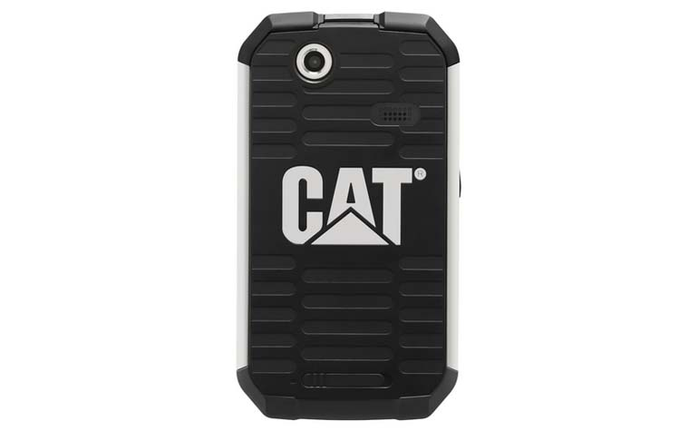 Cat_B15_02