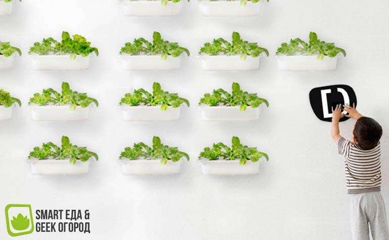 Первая в России выставка еды будущего - Smart Еда & Geek Огород