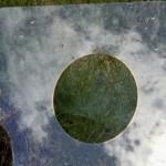 Разработано новое антибликовое покрытие для стекол
